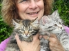 Breeder, Marie Mahoney with Siberian Kittens