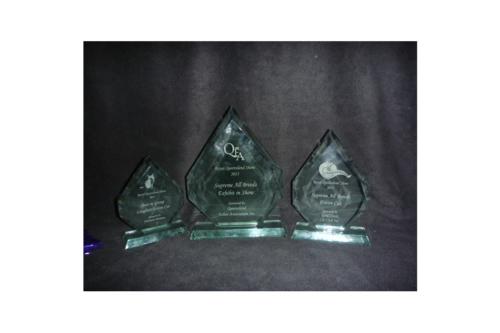 Jaromira Siberian Breeder Awards