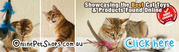 Cat Shop Online Australia